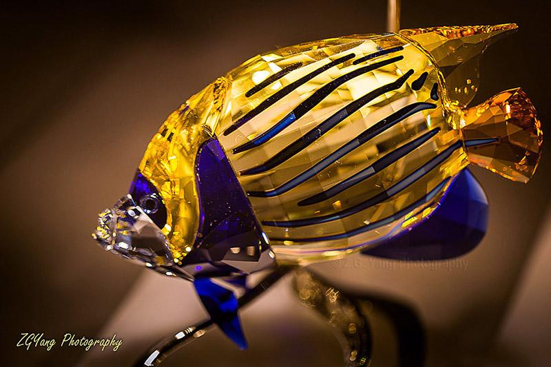 crystal-fish
