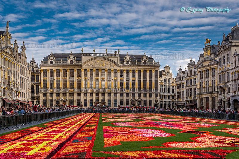 flower-carpet-brussels-2014