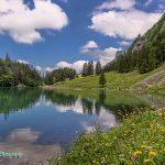 瑞士希阿尔卑湖风光