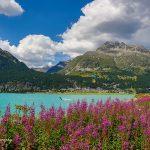 瑞士席尔瓦普拉纳湖