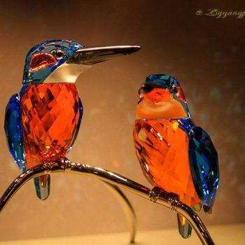 施华洛世奇水晶鸟