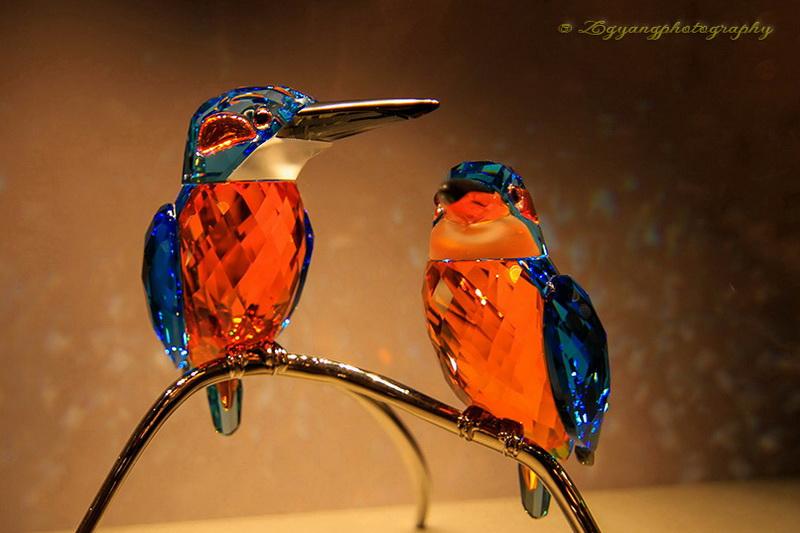 swarovski-birds
